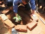 Mulundi Primary-Tree planting